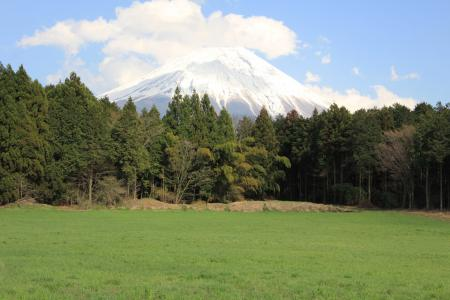 20110424_asagiri_IMG_0288.jpg