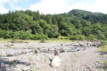 20110623_tanzawa_IMG_0036.jpg