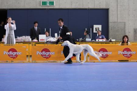 naganoFCI_20110619_IMG_0209.jpg