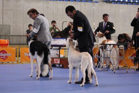 naganoFCI_20110619_IMG_0297.jpg