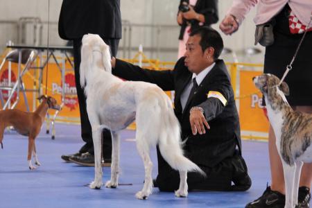 naganoFCI_20110619_IMG_0305.jpg