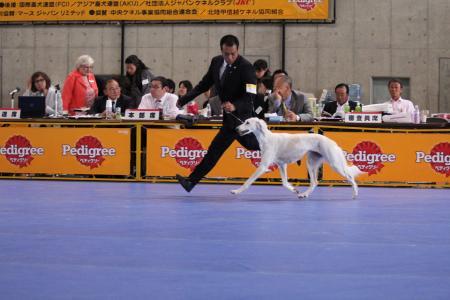 naganoFCI_20110619_IMG_0337.jpg