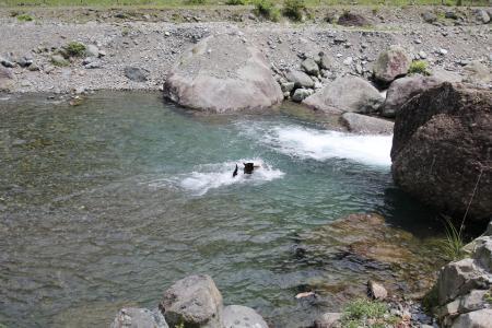 tanzawa20110606_IMG_0089.jpg