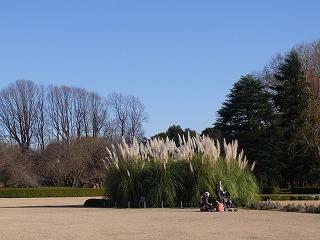 201112神代植物園 013