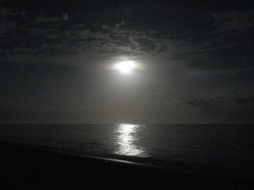 ノーマルの浜辺写真