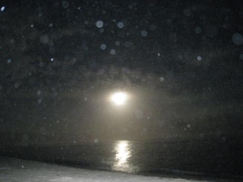 オーブさんが沢山の浜辺写真1