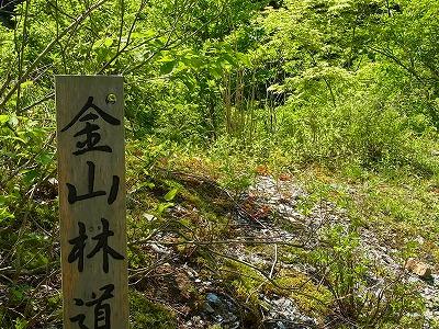 3笹倉湿原