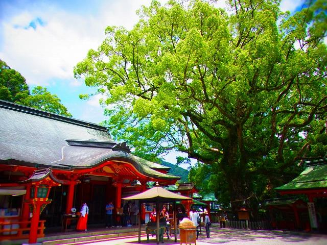 11熊野那智大社