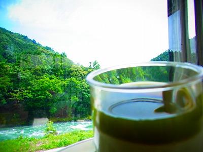 24茶畑プリン 乾杯~
