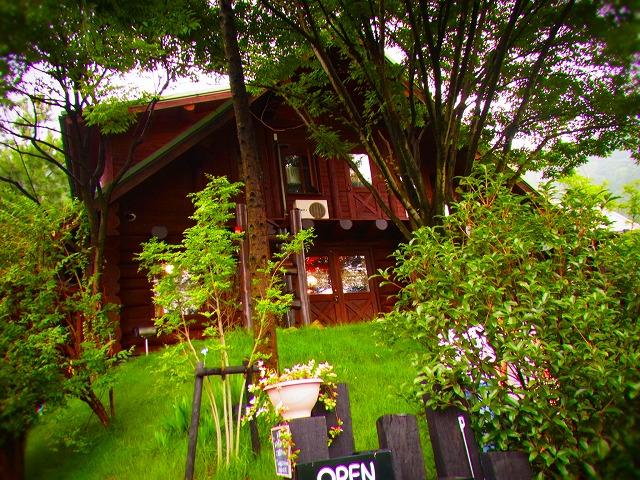 8 log cafe