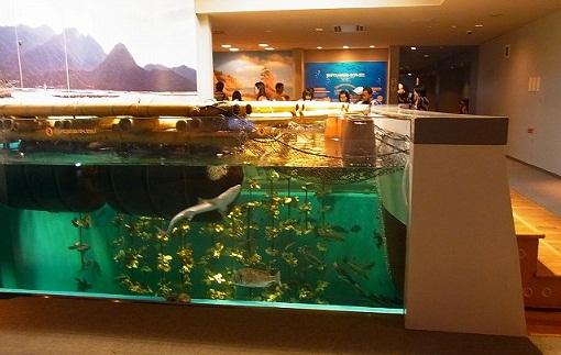 21宮島水族館