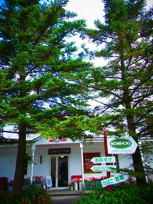 16大野ヶ原 もみの木cafe