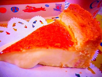 20もみの木 チーズケーキ