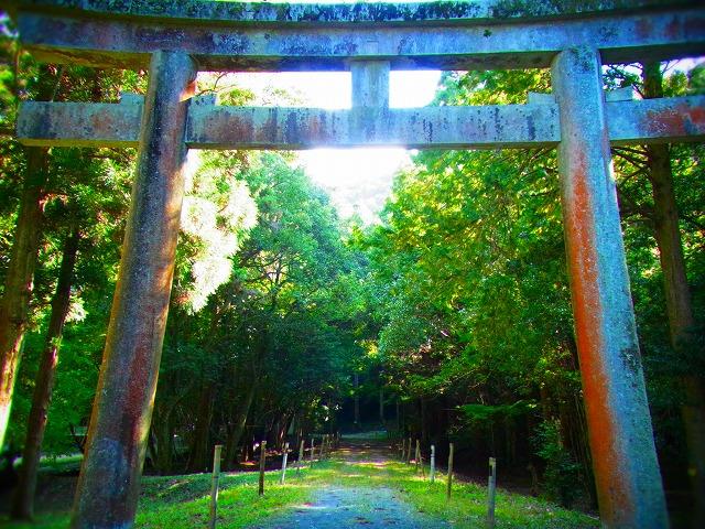 35少彦名神社