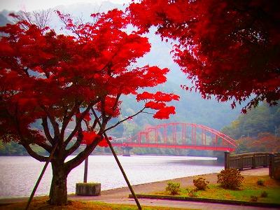 2金砂湖の赤橋