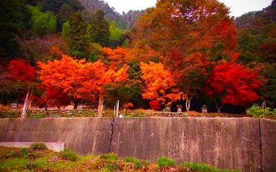 3金砂湖の紅葉