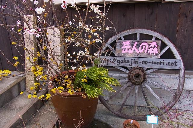 19徳島 岳人の森