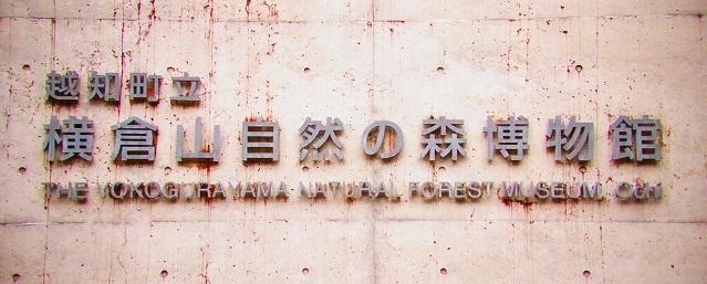 横倉山自然の森博物館1