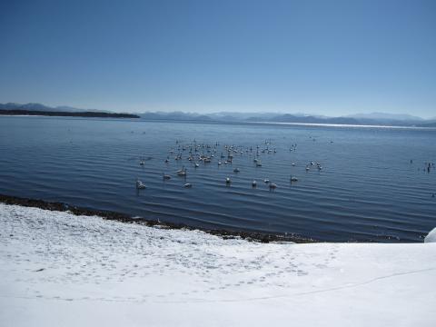 猪苗代湖3_convert_20110216202055