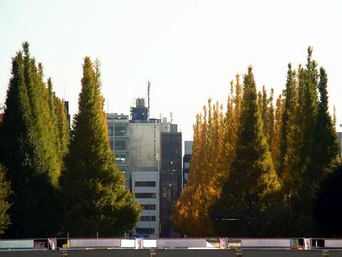 menchisuimei02.jpg