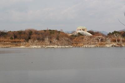 昆陽池の全景