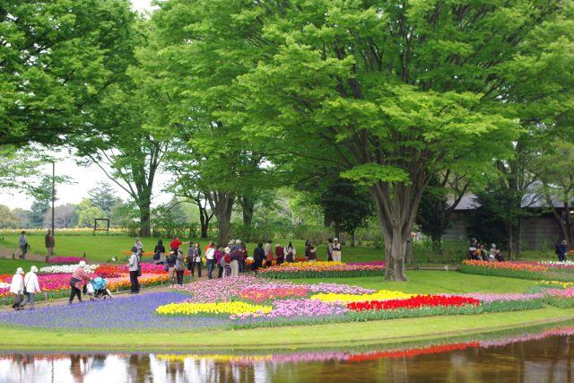 昭和記念公園 325