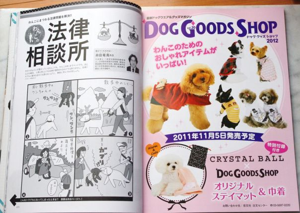 dog doods shop広告 008