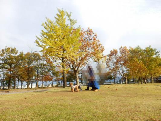 公園散歩11