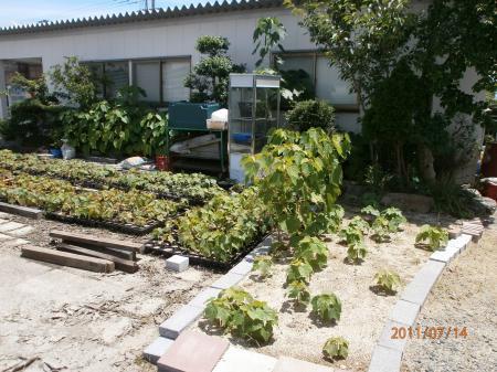 20110716_5