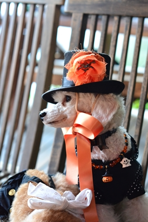 Halloweendog4.jpg
