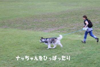20100620_9.jpg