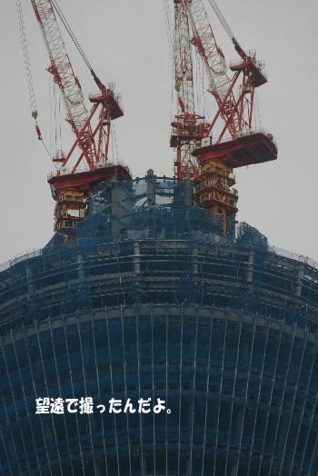 20100627_10.jpg