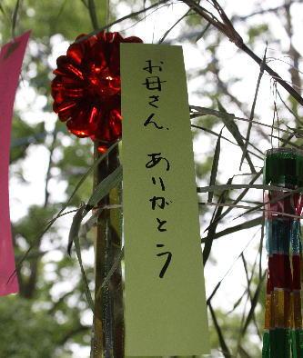 20100703_3.jpg