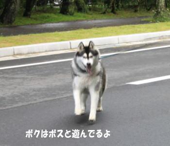 20100705_3.jpg