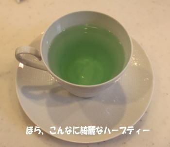 20100711_10.jpg