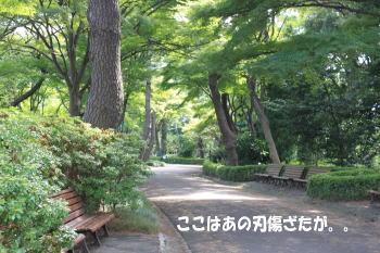 20101003_6.jpg