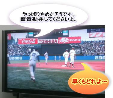20101103_10.jpg