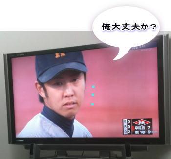 20101103_5.jpg