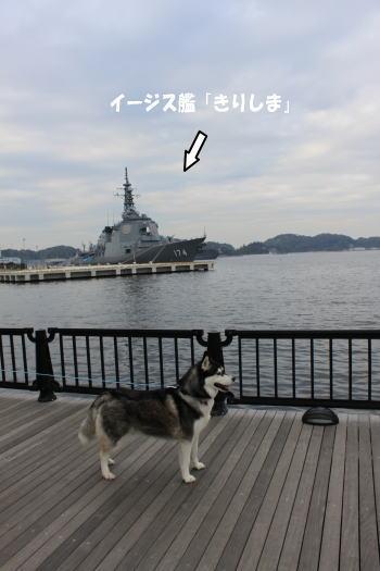 20101124_2.jpg