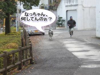 20101128_1.jpg