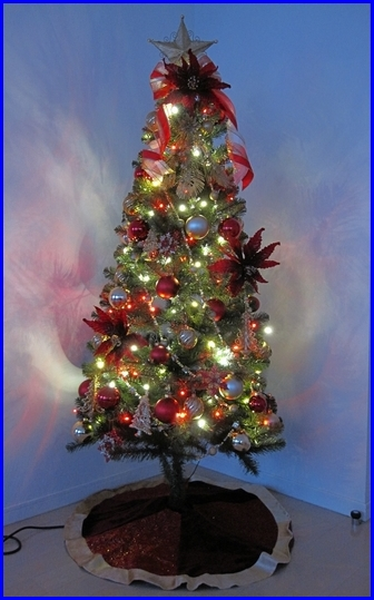 Christmas_2010_11_20-2.jpg
