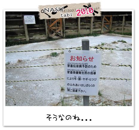 2010nasu5.jpg