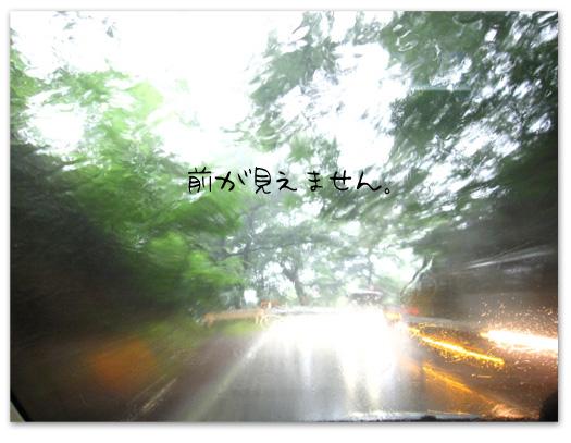 2010nasu8.jpg