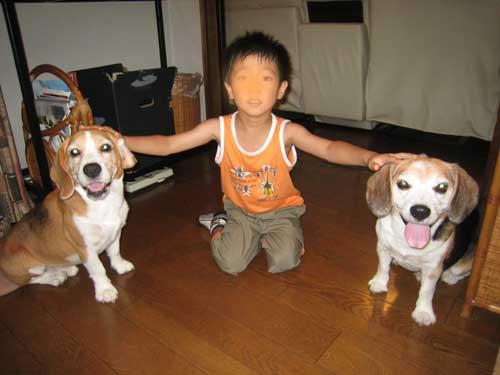 2_20100824112117.jpg