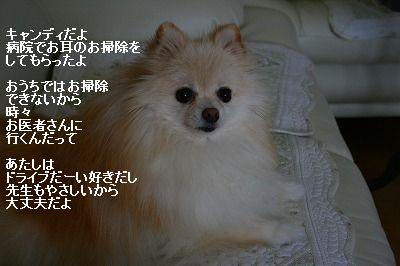 s-IMG_0466.jpg