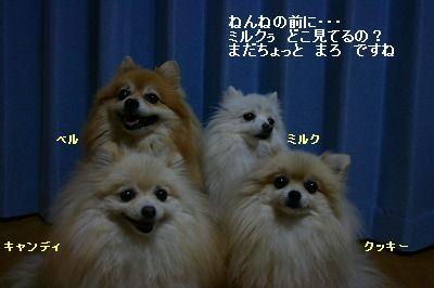s-IMG_0647.jpg
