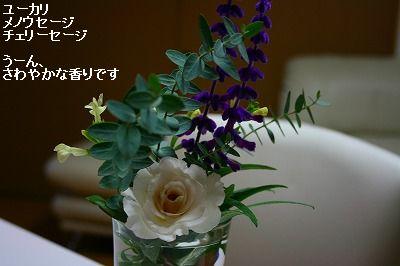 s-IMG_0727_20111015222846.jpg