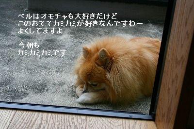 s-IMG_0745.jpg