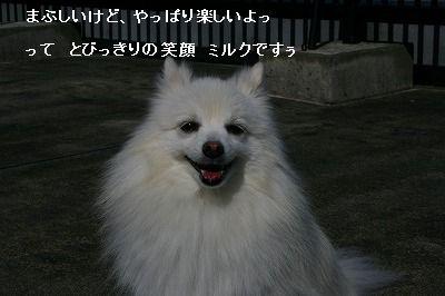 s-IMG_1068.jpg