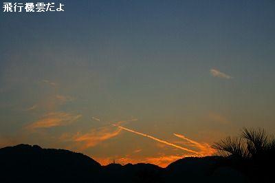 s-IMG_1077_20111029212649.jpg